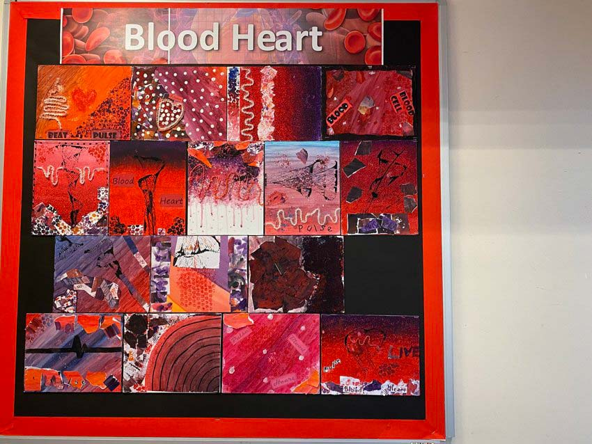 Blood Heart In Class 4