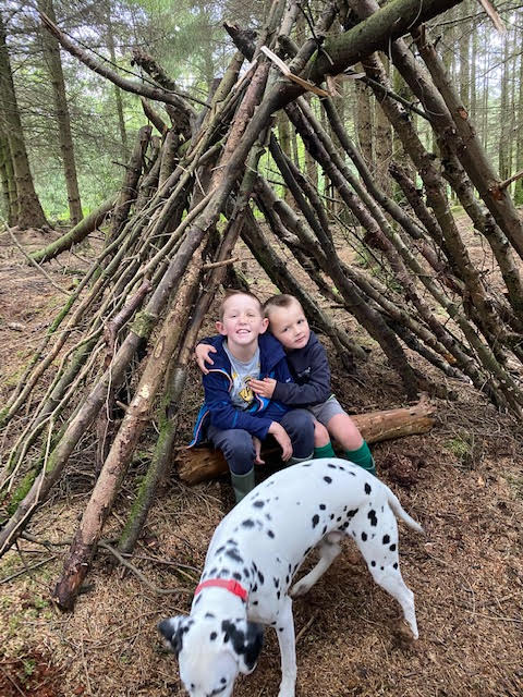 Den Building Fun!